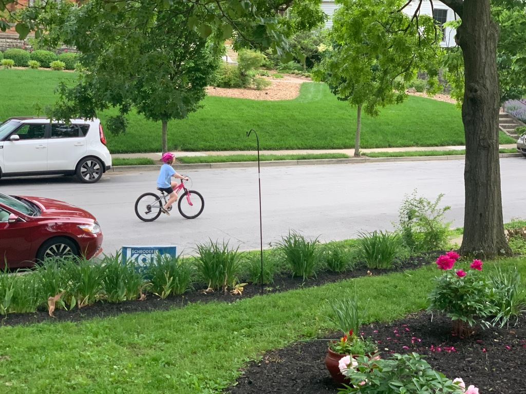 Calvi on a bike
